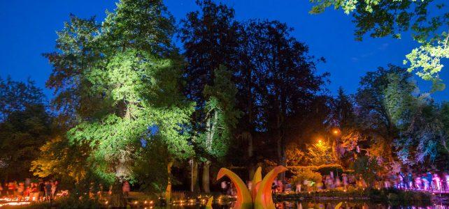 SW-Lichterfest-Mosbach0957